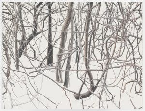 Untitled (branches 1), 2011–2012, Oil on linen, 31 3/4 x 41 3/8 inches